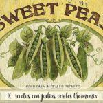 10 recetas de judias verdes con thermomix