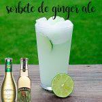 sorbete de ginger ale o jengibre con thermomix