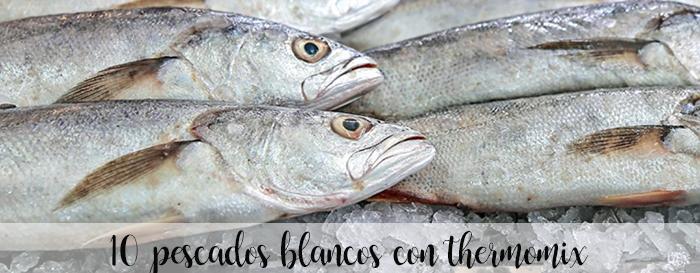 10 Recetas de pescado blanco con thermomix