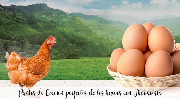 Puntos de Coccion perfectos de los huevos con Thermomix