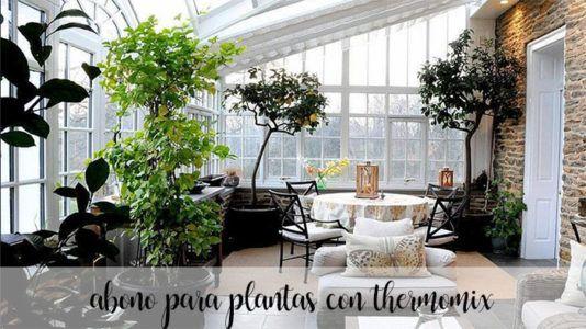 Abono para plantas con thermomix