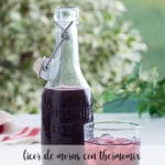 Licor de Moras con Thermomix