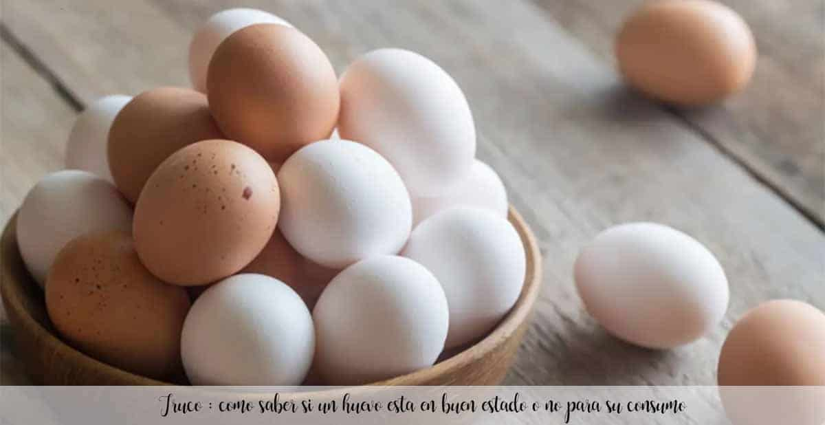 Truco : como saber si un huevo esta en buen estado o no para su consumo
