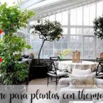 abono para plantas thermomix