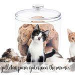 Galletas para gatos con Thermomix