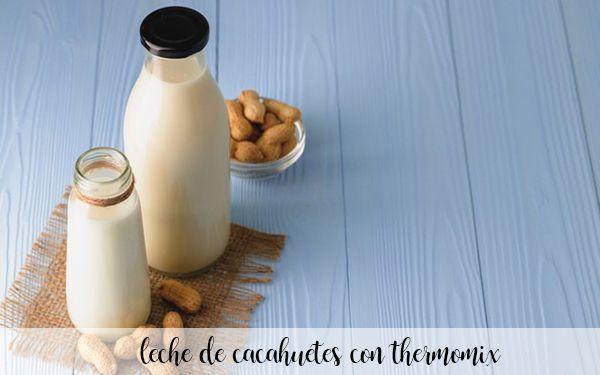 leche de cacahuetes con thermomix