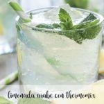 Limonada Arabe con hiebabuena con Thermomix