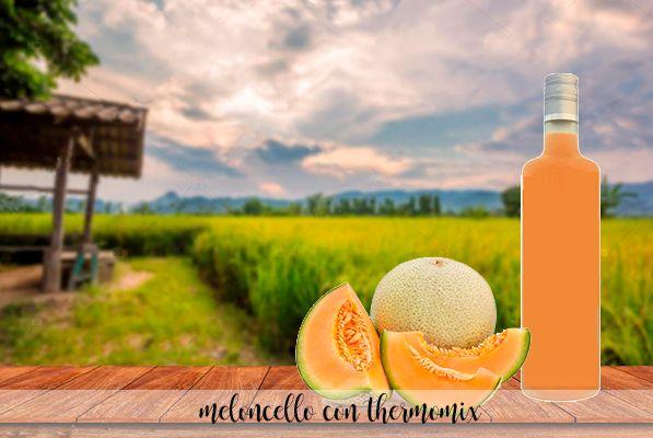 Meloncello – Licor de melón con Thermomix